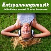 Entspannungsmusik - Ruhige Hintergrundmusik für totale Entspannung von Various Artists