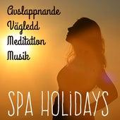 Spa Holidays - Avslappnande Vägledd Meditation Musik för Studie Helande Massage Problemlösning med Instrumental New Age Natur Ljud by Various Artists