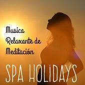Spa Holidays - Musica Relaxante de Meditación para la Resolución de Problemas Técnicas de Estudio Bien Estar con Sonidos de la Naturaleza Instrumentales Binaurales New Age by Various Artists