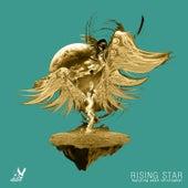 Rising Star (Acoustic) von We Rabbitz
