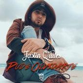 Pude Olvidarte de Justin Quiles