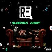 Sleeping Gaint by Req