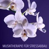 Musiktherapie für Stressabbau - Eine Sammlung der Besten Zen Meditationsmusik und Tiefenentspannungsmusik für Massage und Gesunden Schlaf by Entspannungsmusik Akademie