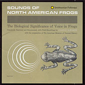 Sounds of North American Frogs by Various Artists