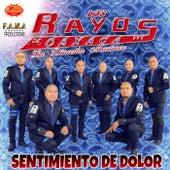 Sentimiento de Dolor by Los Rayos De Oaxaca
