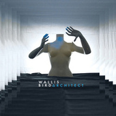 Architect (Deluxe) by Wallis Bird