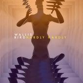 Hardly Hardly by Wallis Bird