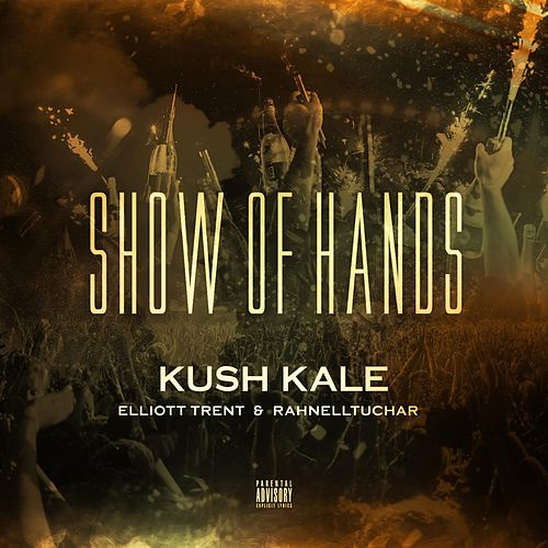 Show of Hands (feat. Elliott Trent & Rahnelltuchar) by Kush Kale