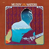 Unk In Funk by Muddy Waters
