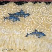 Wake by Lycia