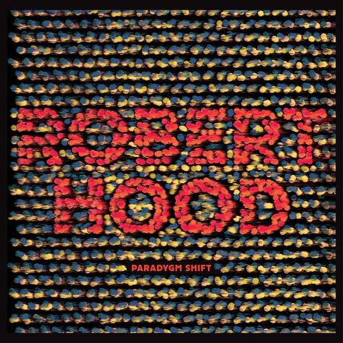 Paradygm Shift by Robert Hood