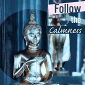 Follow the Calmness – Sounds for Meditation, Zen Music, Calmer Mantra, Exercise Your Brain, Yoga Music, Deep Focus by Reiki