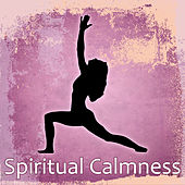 Spiritual Calmness – Music for Meditation, Relaxation Sounds, Soothing Piano, Deep Focus, Positive Thinking, Nature Sounds de Ambient Music Therapy