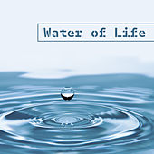 Water of Life – Natural Music, Calming Sounds of Nature, Pure Relaxation, Reiki, Zen by Reiki