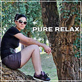 Pure Relax – Healing Music for Relaxation, Tranquility Sounds, Zen Music, Soothing Ocean, Relaxing Waves, Therapy for Peaceful Mind, Stress Relief de Nature Sound Collection
