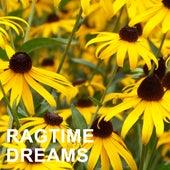 Ragtime Dreams de Various Artists