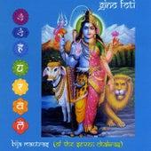 Bija Mantras (Of the Seven Chakras) by Gino Foti