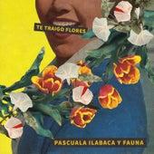 Te Traigo Flores by Pascuala Ilabaca y Fauna