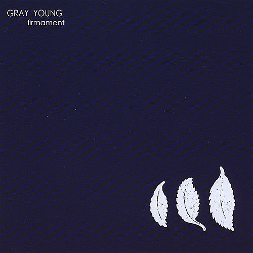 Firmament by Gray Young