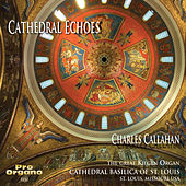 Cathedral Echoes von Charles Callahan