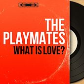 What Is Love? (Mono Version) by The Playmates