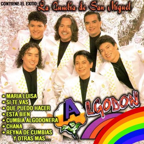 La Cumbia de San Miguel by Algodon