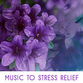 Music to Stress Relief – Inner Peace, Stress Free, Calming Waves, New Age Peaceful Sounds von Soothing Sounds
