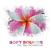 Soft Sounds for Spa Relaxation – Spa Music to Rest Mind & Body, Peaceful Waves, Calming Sounds, New Age Music von S.P.A