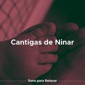 Cantigas de Ninar: Sons para Relaxar e Musica para Recem Nascido de Various Artists