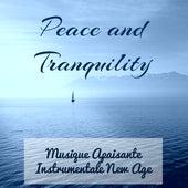 Peace and Tranquility - Musique Apaisante Instrumentale New Age pour Bienfaits de la Méditation Résolution de Problème Bonne Santé avec Sons de la Nature Guérison Spirituelle by Calm Music Ensemble