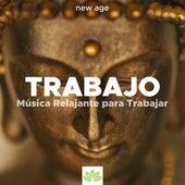 ¡No Estrés! Como Calmar la Ansiedad con Música Relajante New Age con los Sonidos de la Naturaleza de Various Artists