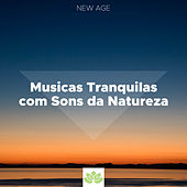 Musicas Tranquilas com Sons da Natureza de Various Artists