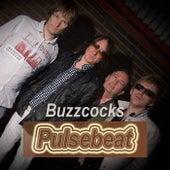 Pulsebeat de Buzzcocks