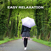 Easy Relaxation – Soothing Sounds to Calm Down, Good Mood, Positive Energy, Peaceful Mind, Zen Music, Stress Relief, Pure Rest de Ambient Music Therapy