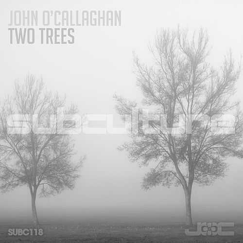 Two Trees by John O'Callaghan