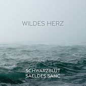 Wildes Herz by Various Artists