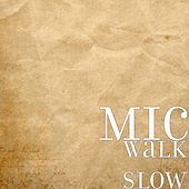 Walk Slow by MDC