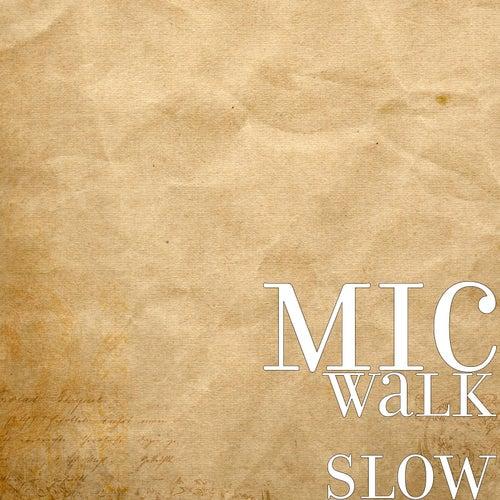 Walk Slow by MDC