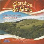 Músicas Gaúchas Inesquecíveis  Vol. 1 de Garotos de Ouro