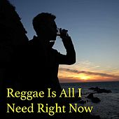Reggae Is All I Need Right Now by Various Artists