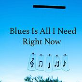 Blues Is All I Need Right Now de Various Artists