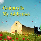 Country Is My Addiction von Various Artists