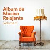 Álbum de Música Relajante, Vol. 2 (Música Chill Out de Relajación zen para Dormir, Meditar, Practicar Yoga, Estudiar y Leer) by Various Artists