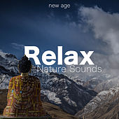 Relax - Nature Sounds, Piano Music for Sleep and Relaxation de Various Artists