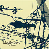 Mostly Love by Tim Gearan