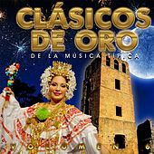 Clásicos de Oro de la Música Típica, Vol. 6 de Various Artists