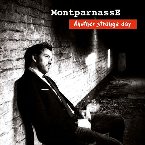 Another Strange Day (French Edit Radio) de MONTPARNASSE