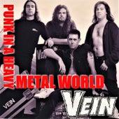 Punk in a Heavy Metal World de Vein