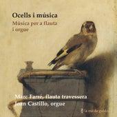 Ocells I Música: Music For Flute And Organ by Joan Castillo