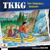 201/Vom Goldschatz besessen von TKKG